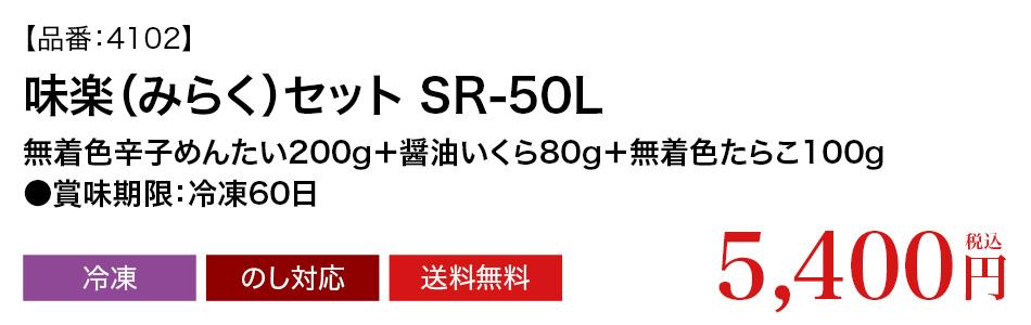 品番4102