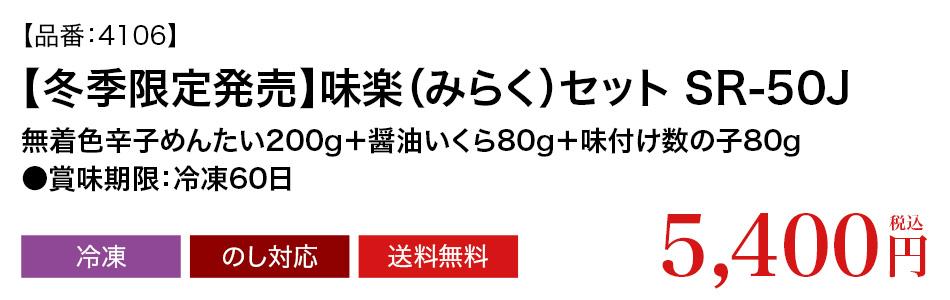 品番4106